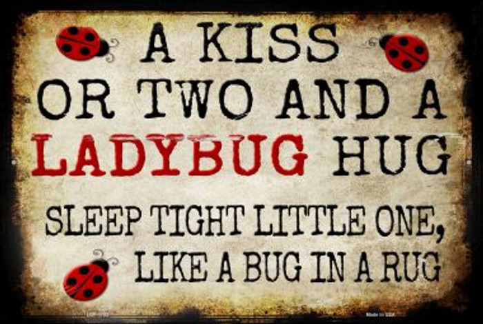 A Kiss and A Ladybug Hug Novelty Metal Large Parking Sign LGP-1753