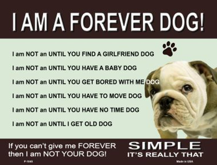 Forever Dog Metal Novelty Parking Sign