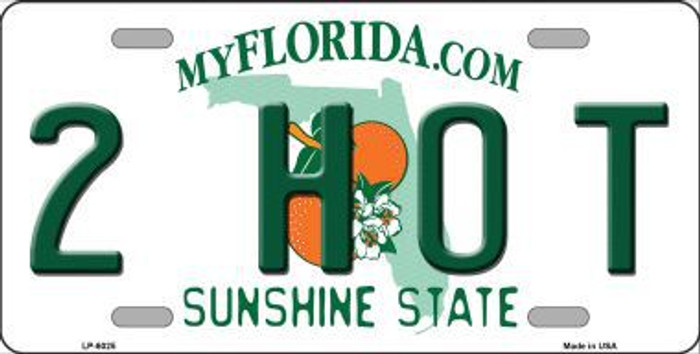 2 Hot Florida Novelty Metal License Plate LP-6025