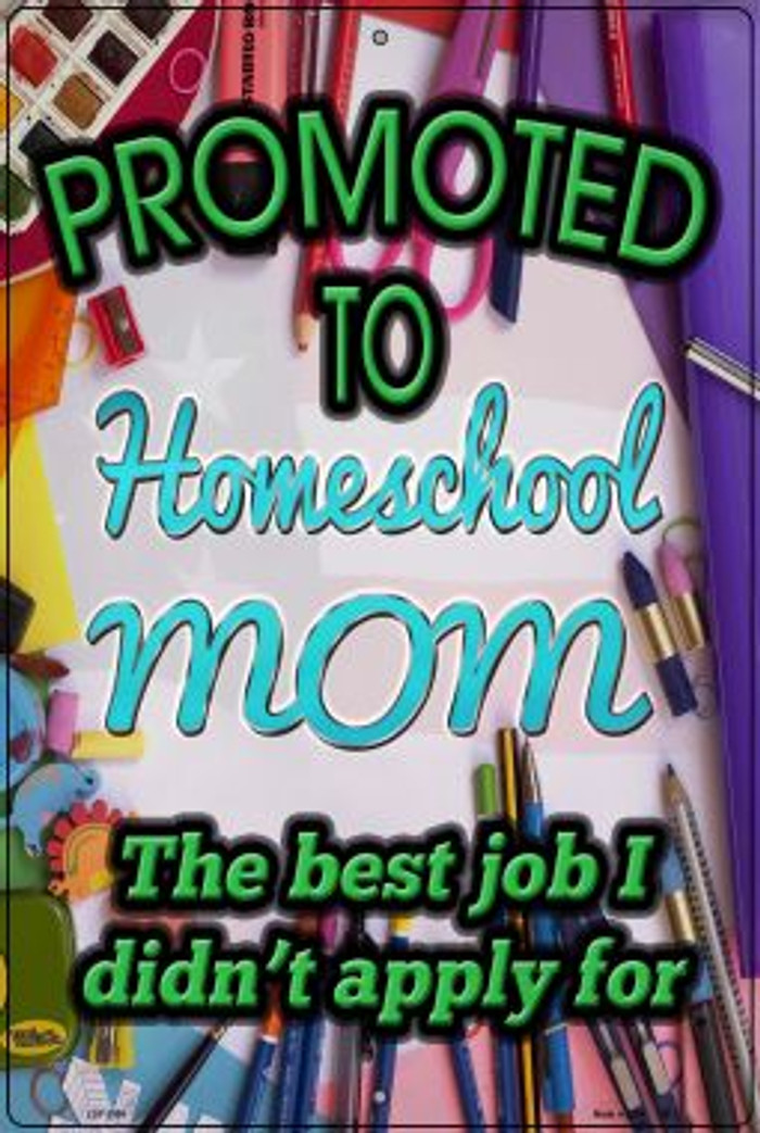 Promoted To Homeschool Mom Novelty Metal Large Parking Sign LGP-2905