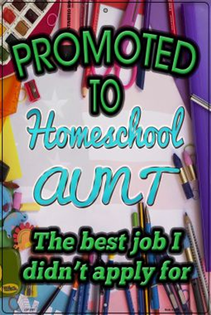 Promoted To Homeschool Aunt Novelty Metal Large Parking Sign LGP-2907