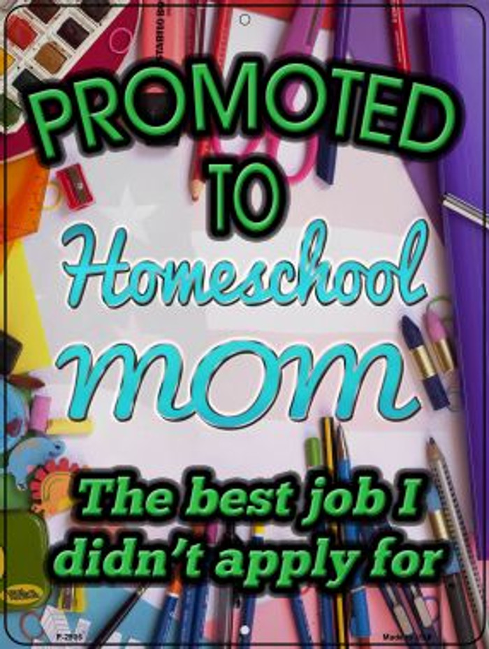 Promoted To Homeschool Mom Novelty Metal Parking Sign P-2905
