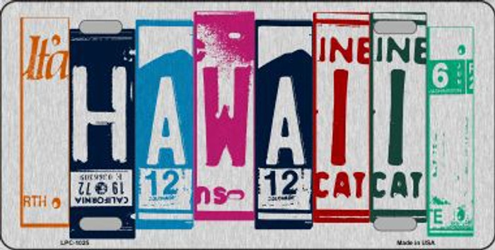 Hawaii License Plate Art Brushed Aluminum Metal Novelty License Plate