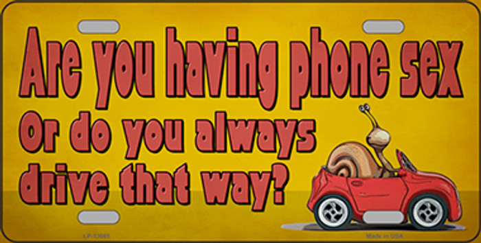 Are You Having Phone Sex Novelty Metal License Plate Tag LP-13665