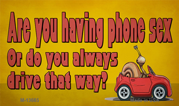 Are You Having Phone Sex Novelty Metal Magnet M-13665