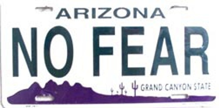 No Fear Arizona Novelty Metal License