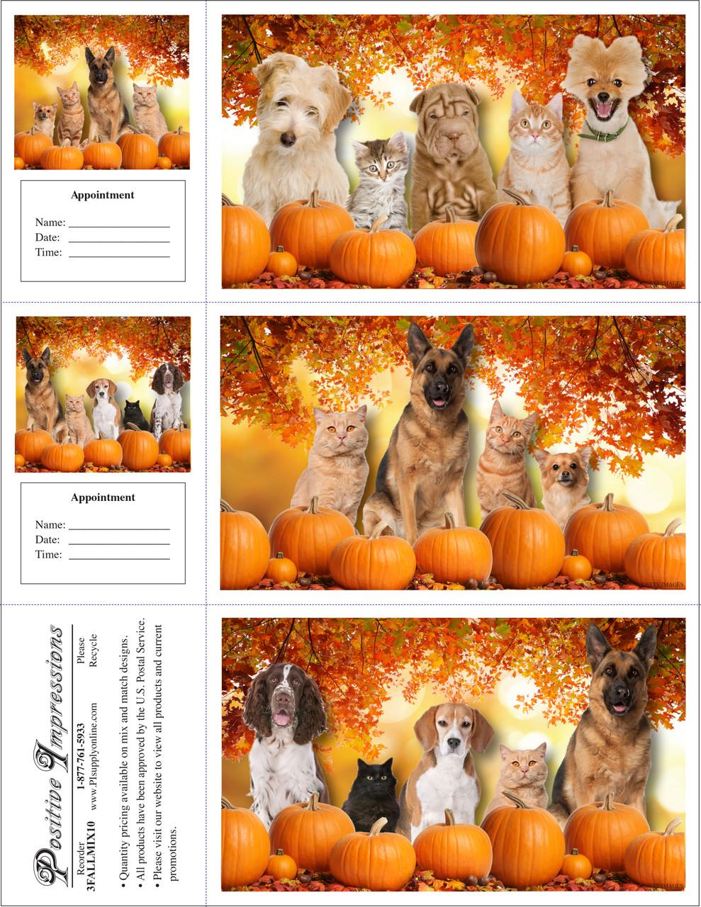 3FALLMIX10 - 3 Up Reminder Cards