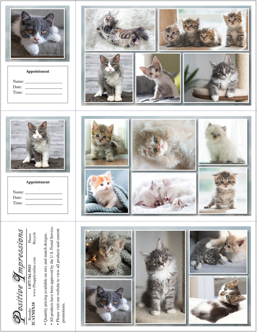 3CATMIX10 - 3 Up Reminder Cards