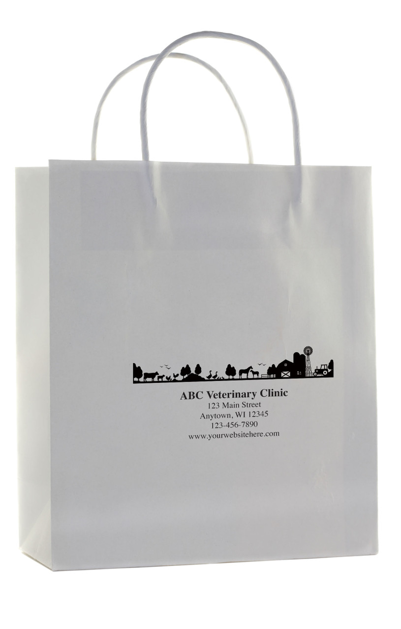 HSD38 - Personalized Handled Paper Bag (Multiple Imprint Colors Available)