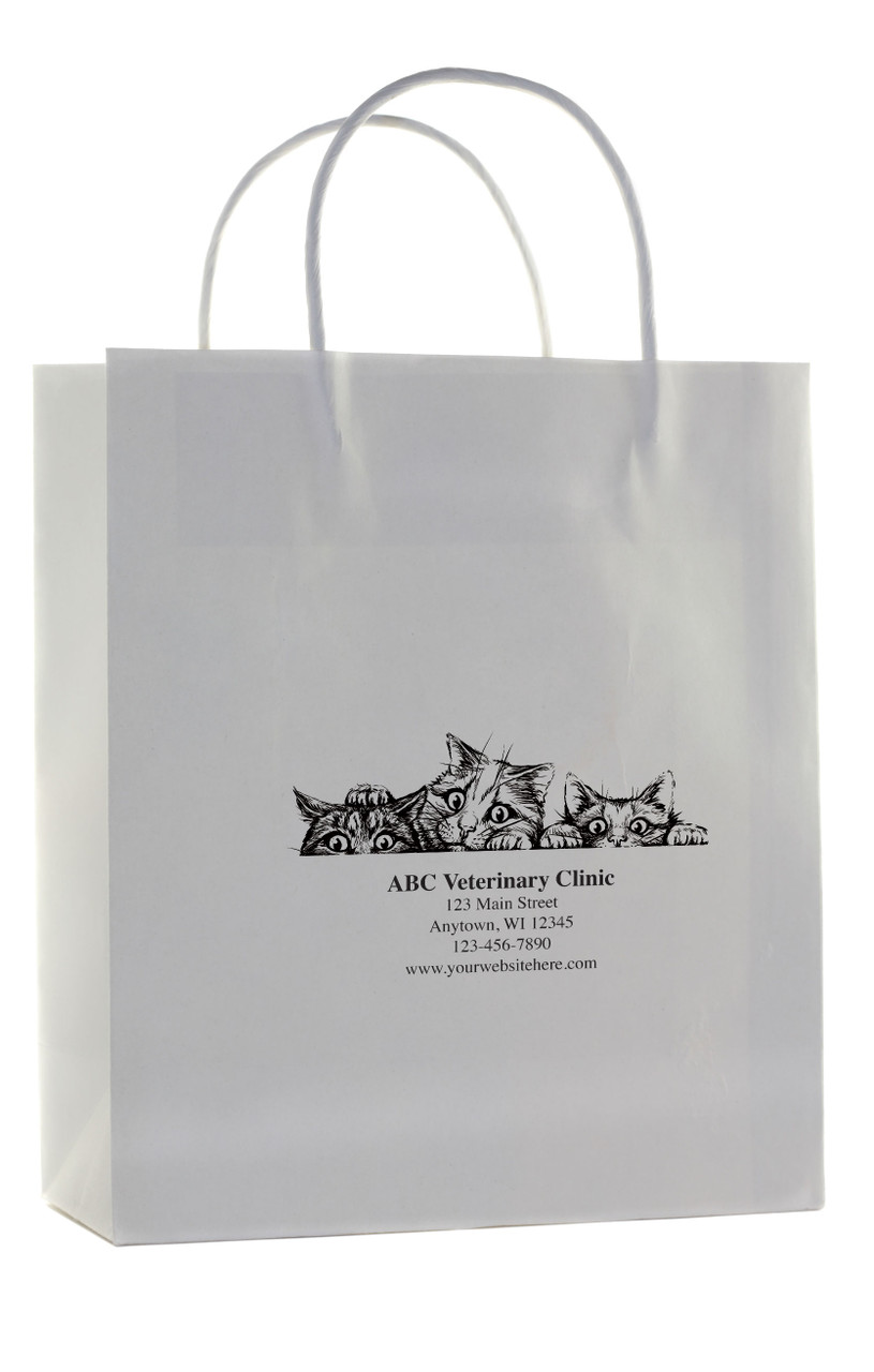 HSD41 - Personalized Handled Paper Bag (Multiple Imprint Colors Available)