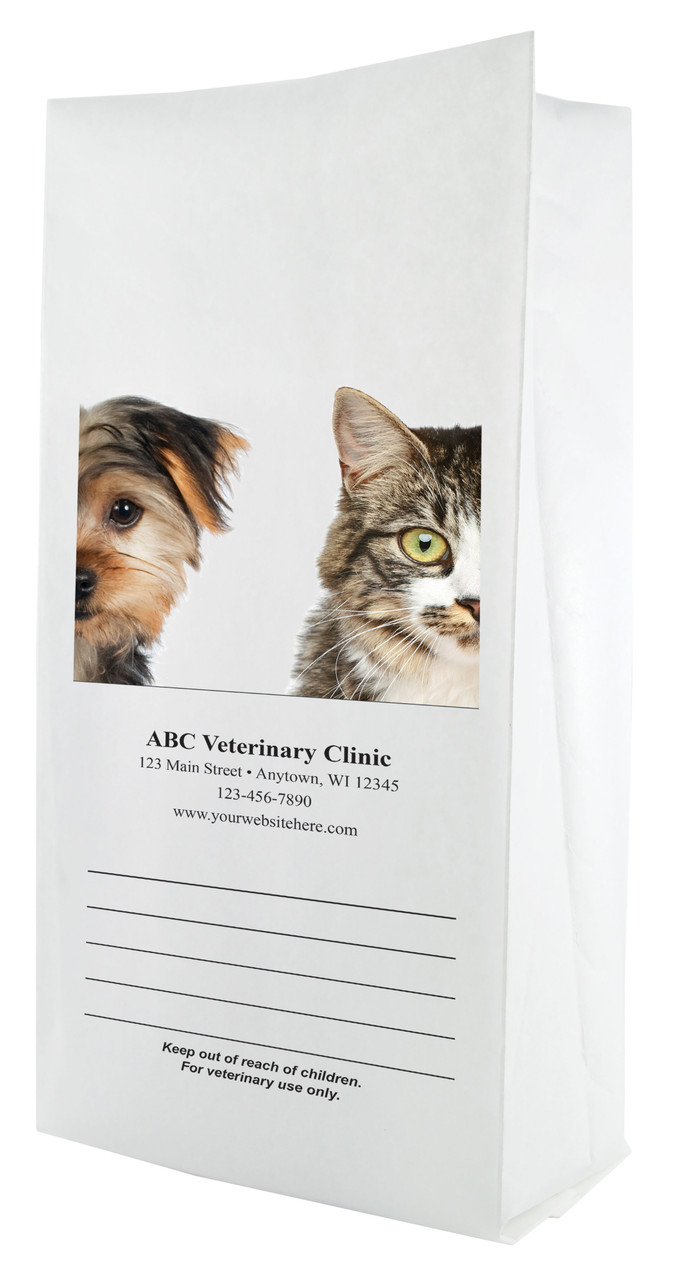 FCPFL12 - Full Color Personalized Large Flat Bottom Paper Bag