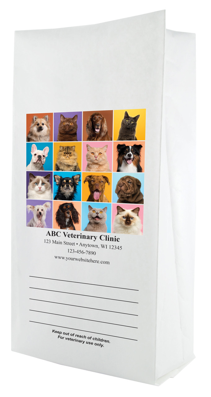 FCPFL13 - Full Color Personalized Large Flat Bottom Paper Bag