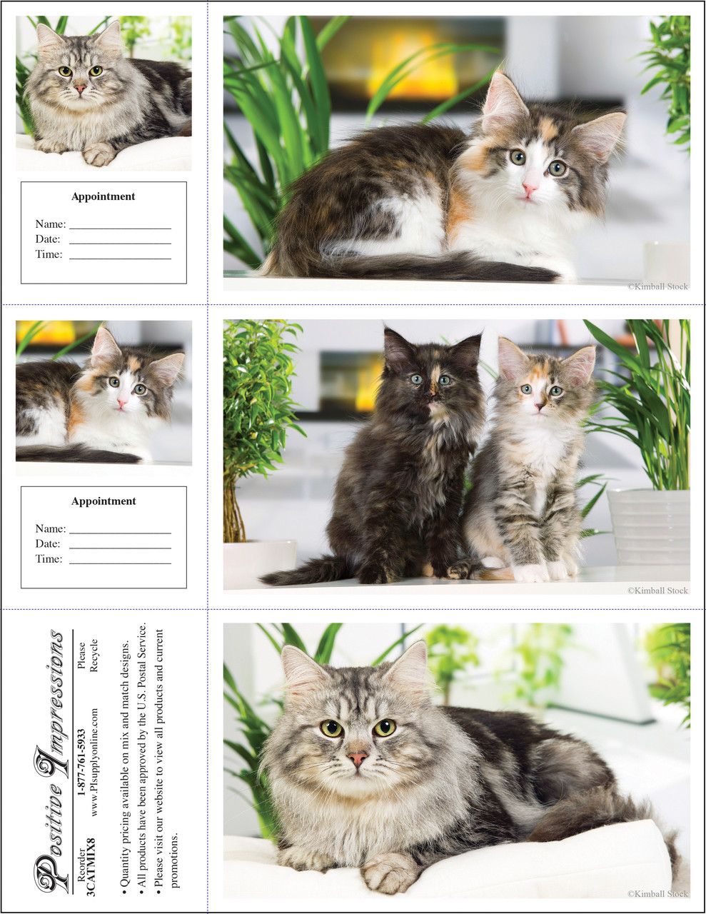 3CATMIX8 - 3 Up Reminder Cards