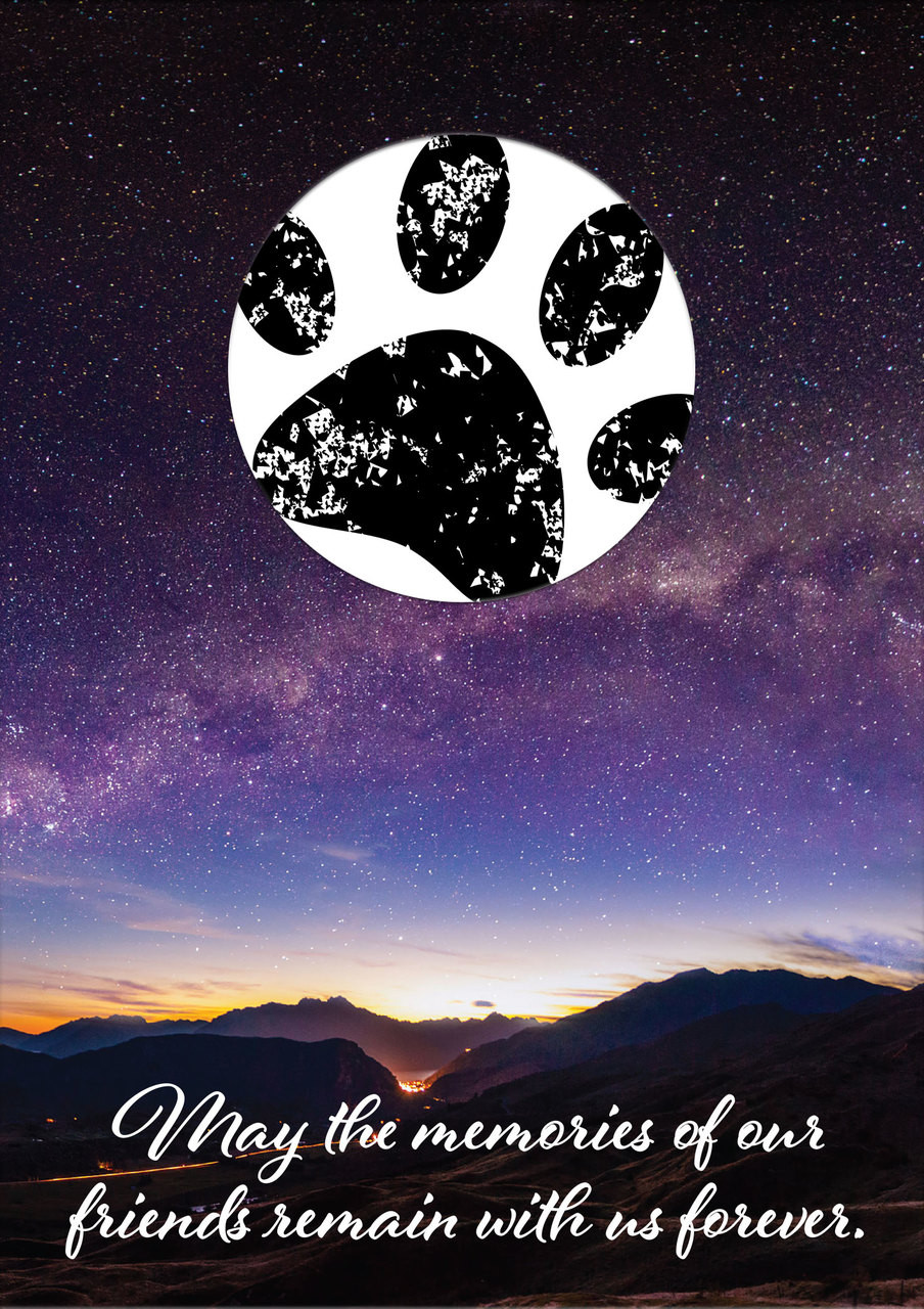 SDNIGHT - with sample of stamped paw print