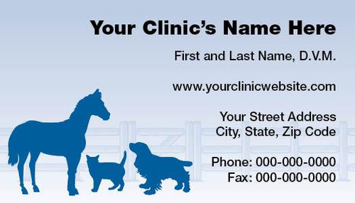 VBCSTD111-Standard, Appointment Backed, or Magnetic Business Card