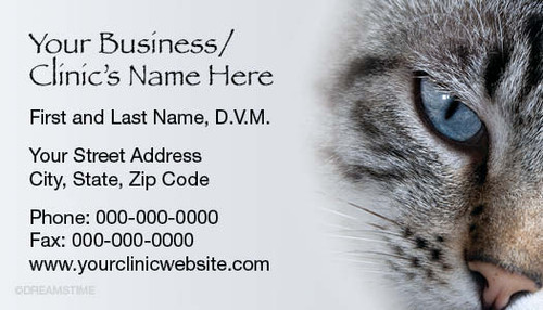 VBCSTD113-Standard, Appointment Backed, or Magnetic Business Card