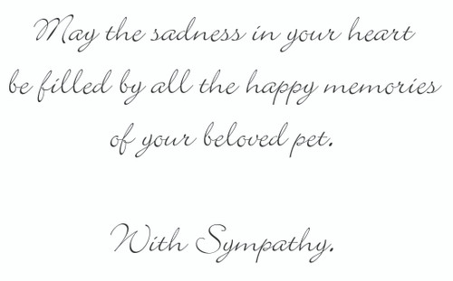 SYMCAT18 - Sympathy Card