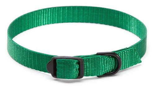 COLLAR1 - Personalized Collar