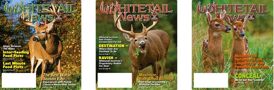 whitetail-news.jpeg