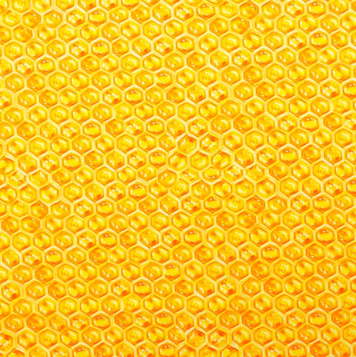 Honey Comb Cotton Spandex Knit by Made Whimsy
