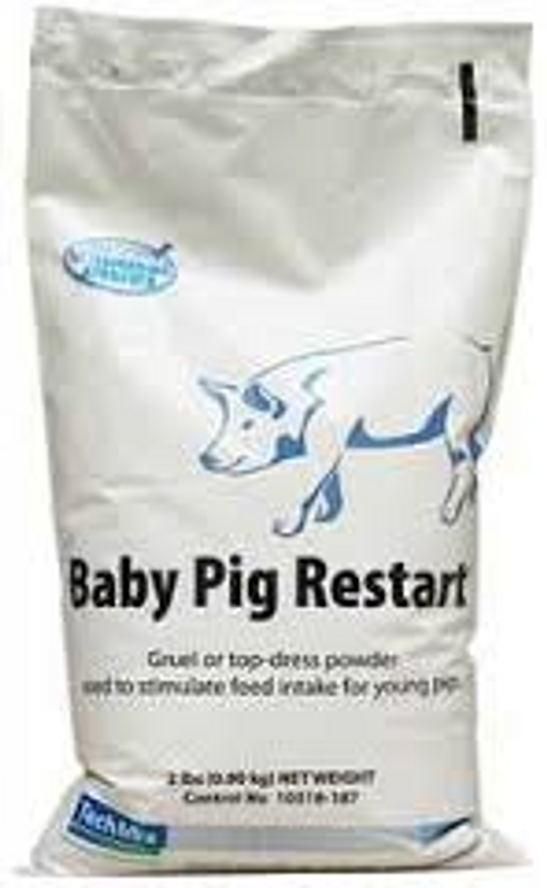 Baby Pig Restart