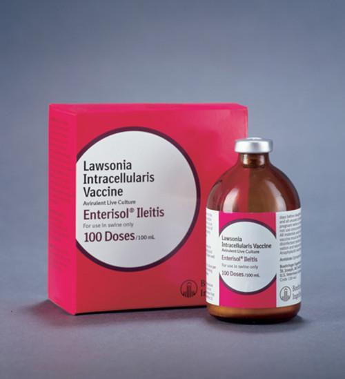 Enterisol Ileitis Non Frozen
