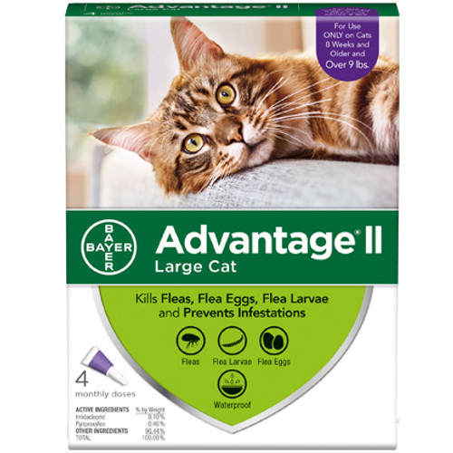 Advantage II Cat 10-15lbs. 4 Pack