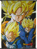 Dragon Ball Z Super Saiyans Wall Scroll
