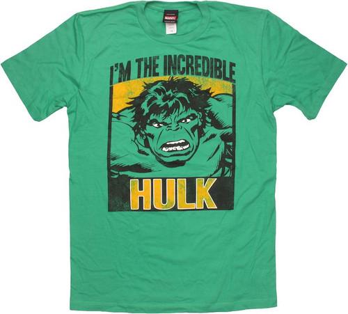 Incredible Hulk Block Portrait T Shirt Sheer