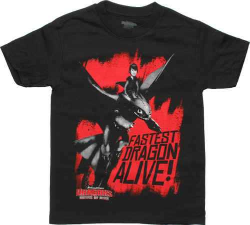 Dragons Riders of Berk Fastest Youth T Shirt