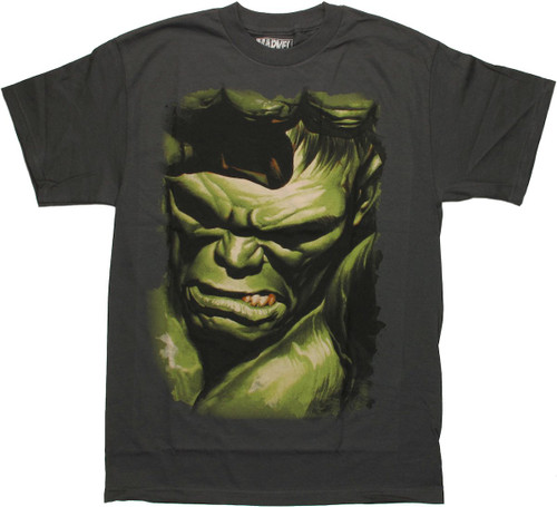 Incredible Hulk Marvel 75th Special Edition Alex Ross T Shirt