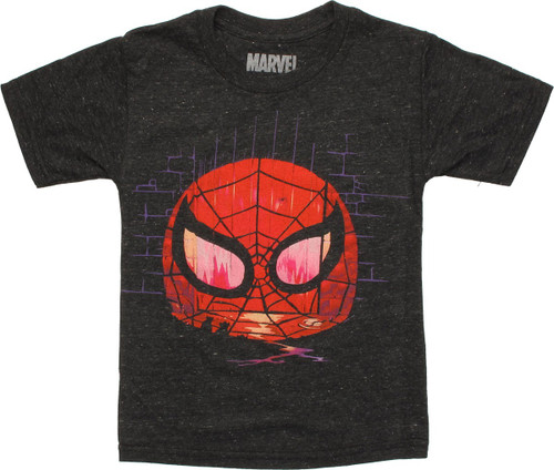Spiderman Mask Grafitti Wall Juvenile T-Shirt