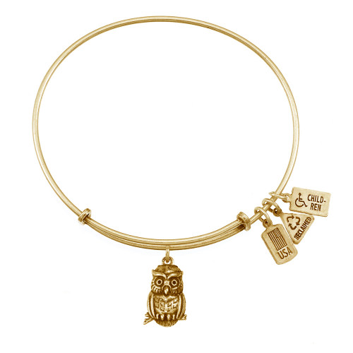 Wind and Fire 3D Owl Charm with Bangle WF-519