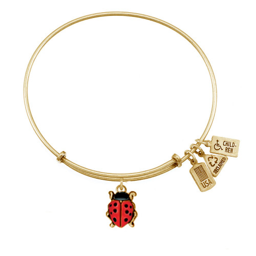 Wind and Fire 3D Enamel Ladybug Charm with Bangle WF-517