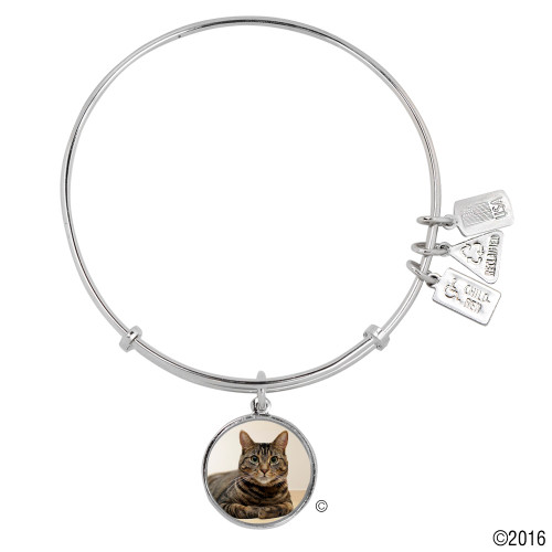 "Wind and Fire ""Tabby Cat"" Enamel Painted Charm with Bangle WF-793"