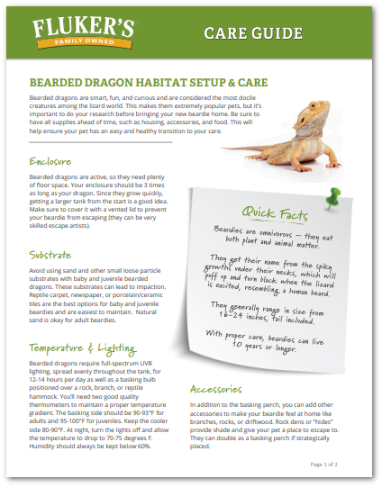 bearded-dragon-care-sheet-flukers.png