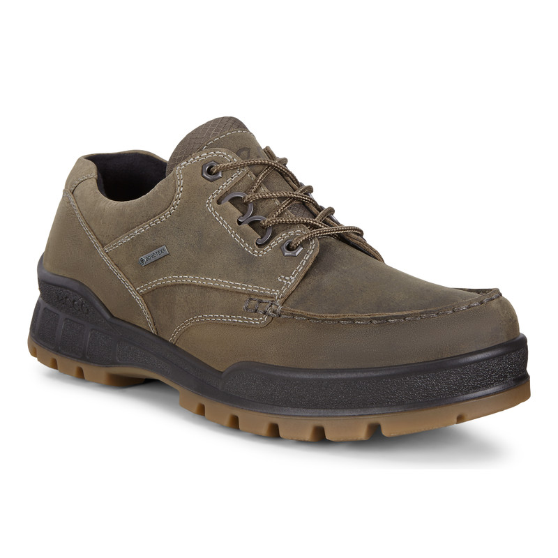 ECCO Men's Track 25 GTX Low - Tarmac - 831804-01543 - Main Image
