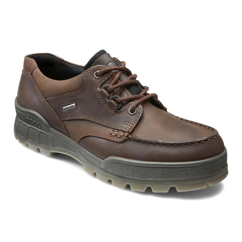 ECCO Men's Track II Low Cut - Bison - 1944-741 - Angle