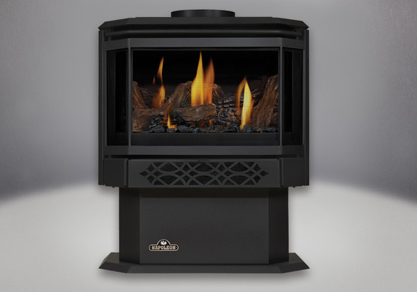 Napoleon Haliburton™ GDS28-1NSB Direct Vent Gas Stove