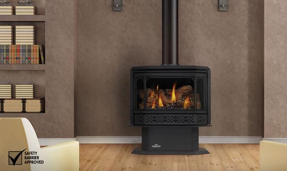 Napoleon GDS60 direct vent gas stove