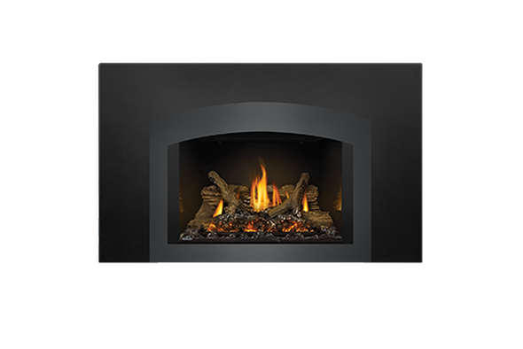 Napoleon GDIX4 Oakville Series Gas Fireplace Insert