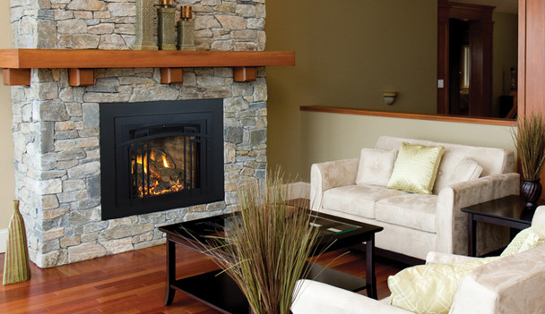 Iron Strike Madison Park™ 27 Gas Fireplace Insert