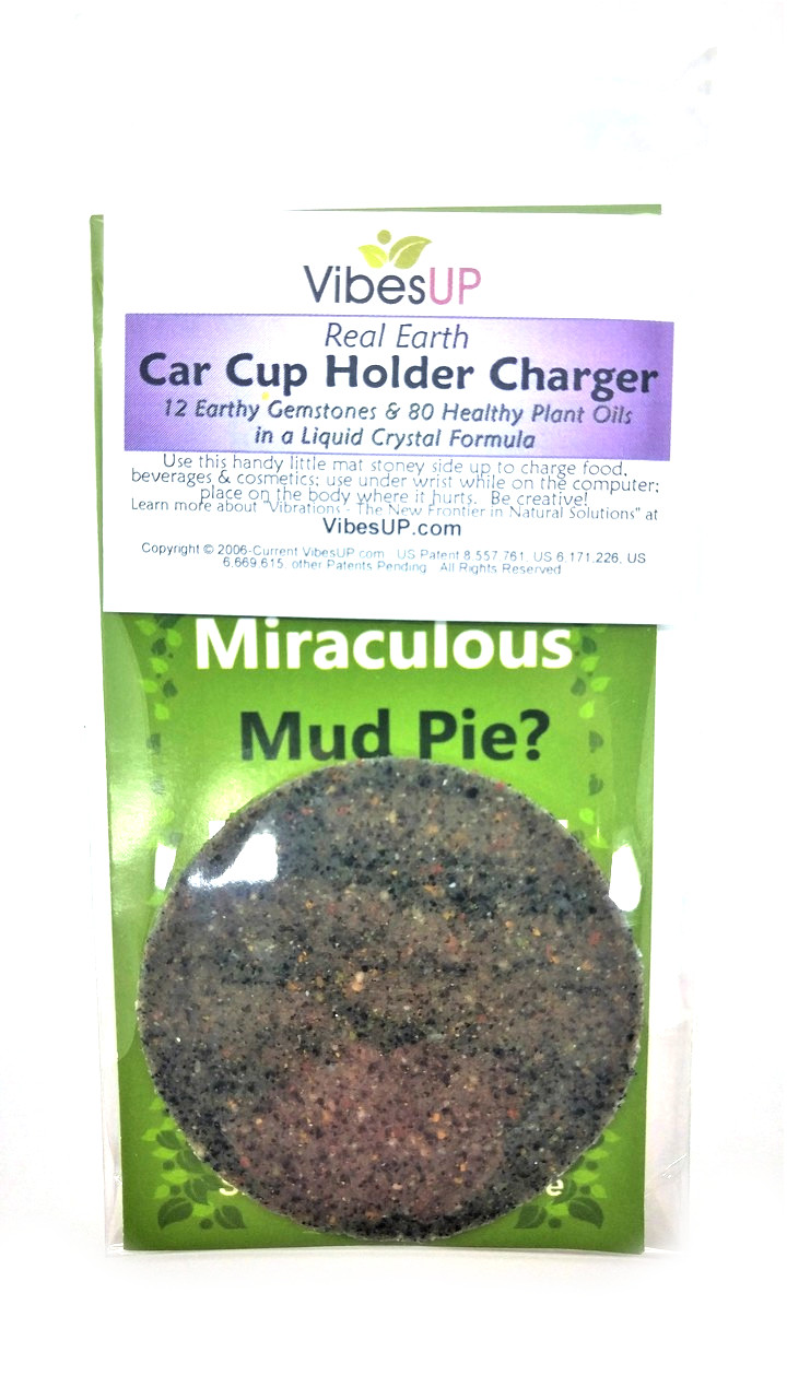 Real Earth Car Cup Holder Charger