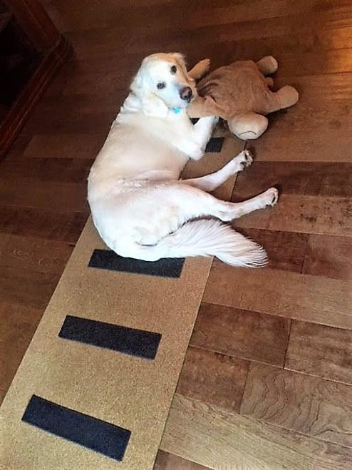 Vibe Therapy Cork Yoga Mat