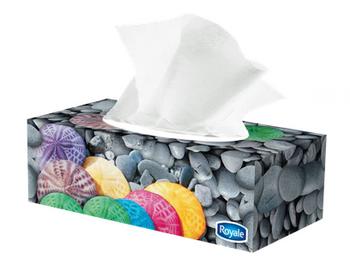 Royale 3-Ply facial Tissue   72 Sheets