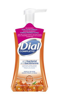 Dial Complete Antibacterial Foaming Hand Wash - Omega Moisture | 221 ml