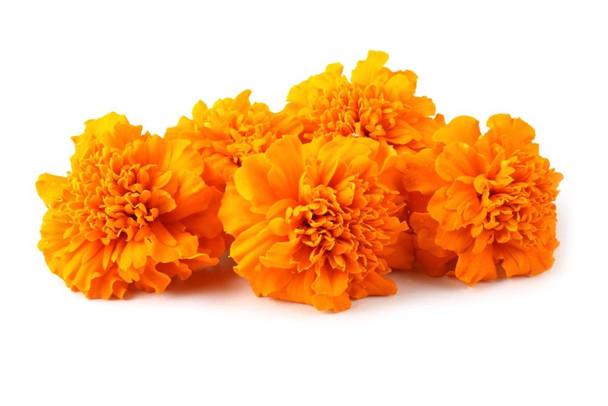 Marigold Banti Poolu fresh Flowers 100 Gms - 1 Pack
