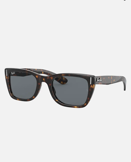 Carribbean  Sunglasses with Tortoise Frame and Blue Lens