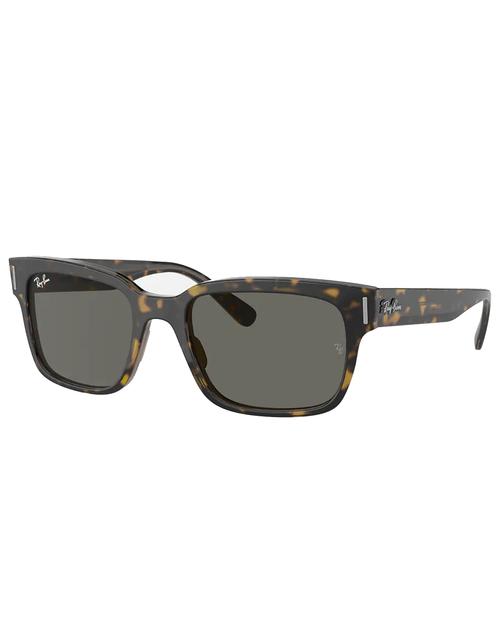 Jeffery Sunglasses with Havana Transparent Brown Frame and Dark Grey Lens