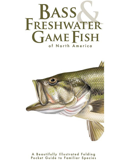 Bass & Freshwater Game Fish